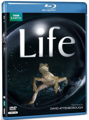 مستند حیات وحش بی نظیر