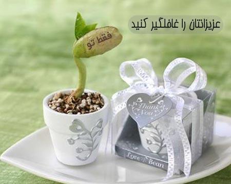 لوبیای سحر آمیز با پیام فارسی